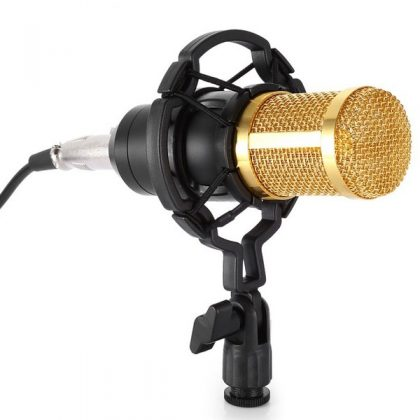BM800 Microphone- High Performance Condenser Microphone For YouTube Studio